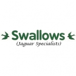 Swallows (Jaguar Specialists)