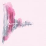 Flamingo Prints