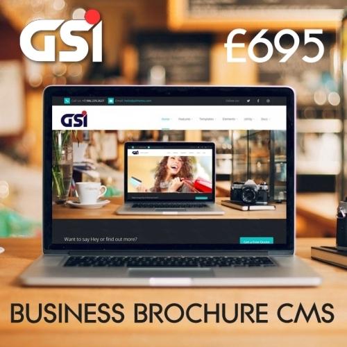 GSI Business & Technical Business website