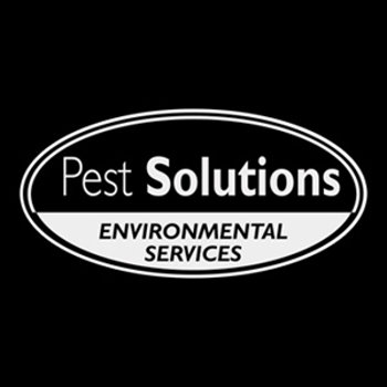 Pest Control Service Aberdeen