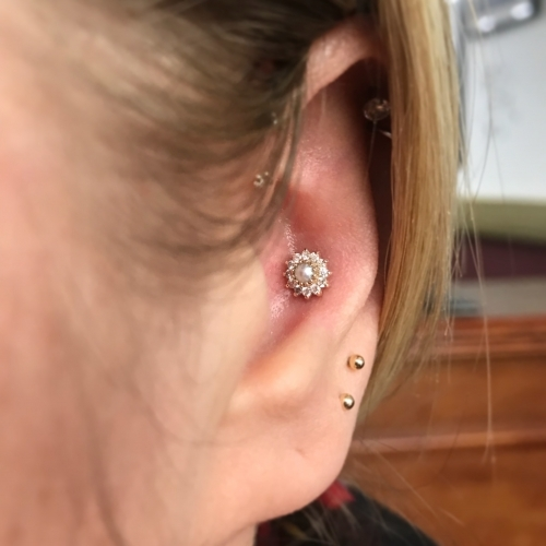 Conch piercing by Mara, installed with a 14k gold flower with pearl centre from BodyGems.