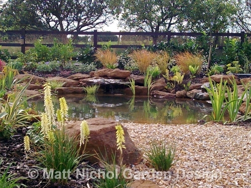 Wildlife pond in a rural barn garden.