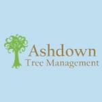 Ashdown Tree Management