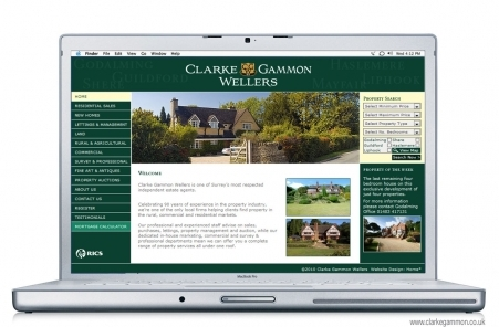 Website Design and Build - Clarke Gammon Wellers, Guildford