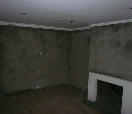 Damp Proofing 2011 035