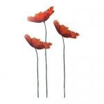 Poppies Florists