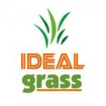 Ideal Grass