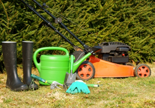 Affordable drives gardening services in frodsham for Affordable garden services