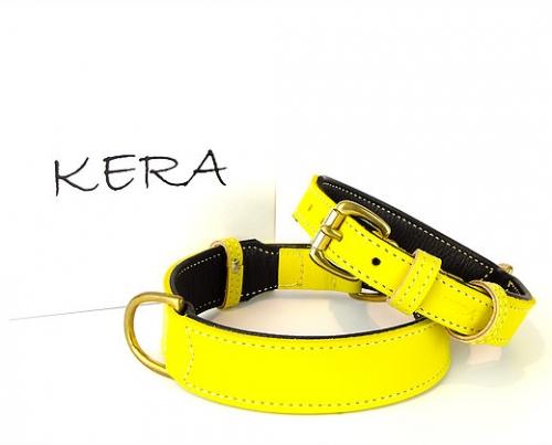 Luxury Yellow Dog Collars
