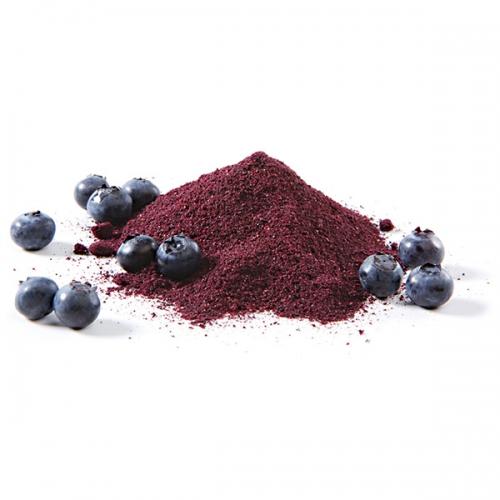 Raw Organic Blueberry Powder