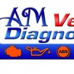 Am Vehicle Diagnostics