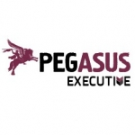 Pegasus Executive Search