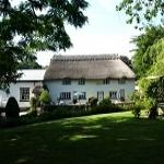 Barn & Pinn Cottage