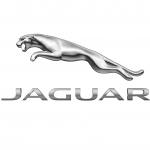 Guy Salmon Jaguar, Thames Ditton