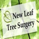 New Leaf Tree Surgery Ltd