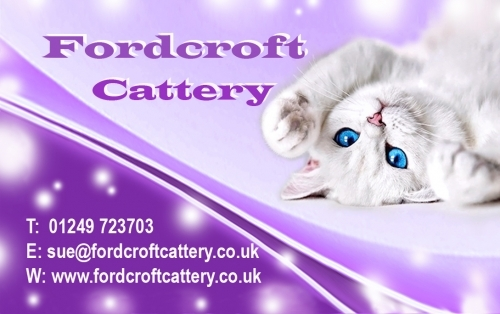 Fordcroft Cattery