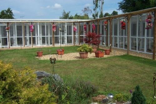 Cattery Garden 2011
