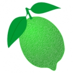 Lime Tree Web Design