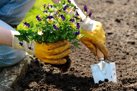 Gardeners Redhill