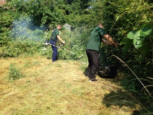 Gardening Services in Bristol