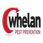 Whelan Pest Prevention Liverpool