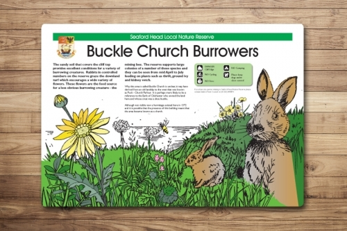 Illustrated Countryside Interpretation Panel Design