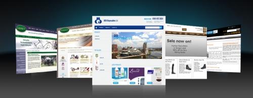 E-Commerce Trading Website