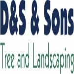 D&S & Sons Tree and Landscaping