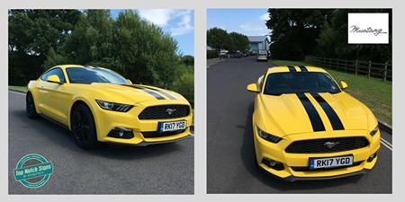 Super Car Decals - Mustang