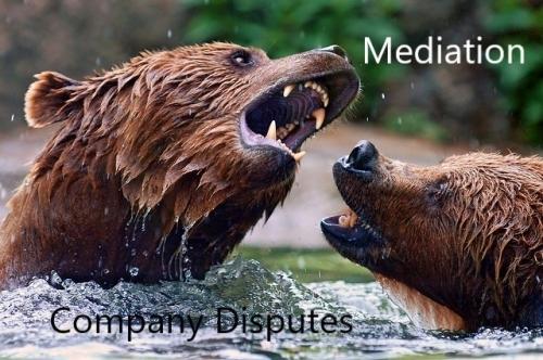 Company Disputes