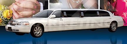Limo Bridal Pic