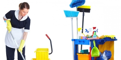 Kingston Professional Flat Cleaning Kt2