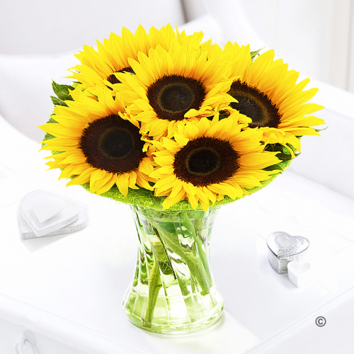 Sunflower Sunburst Vase