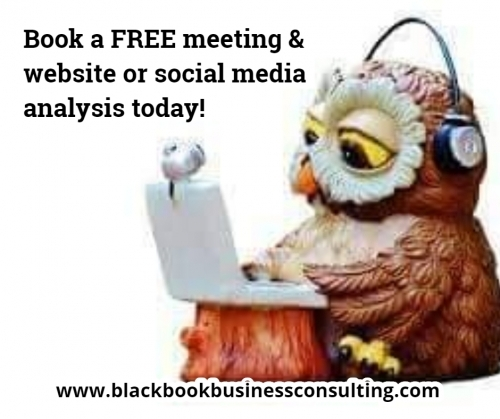 FREE Meeting and review of website and social media