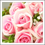 brides hand tied bq, pink barbie roses