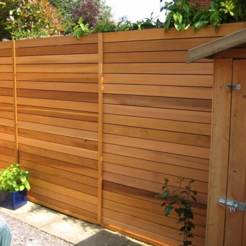 Cedar Fencing East London