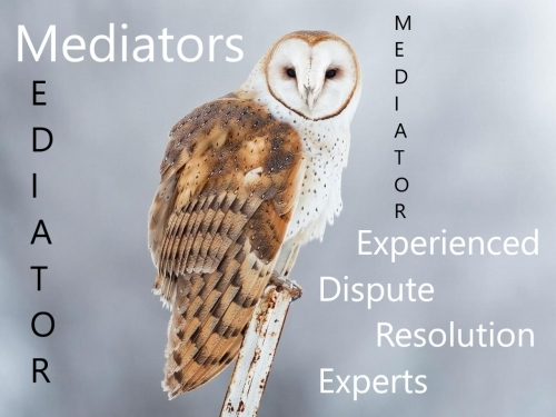 Experienced Resolution Experts