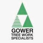 Gower Tree Work Specialists