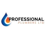 professional plumbers LTD