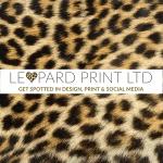 Leopard Print Ltd