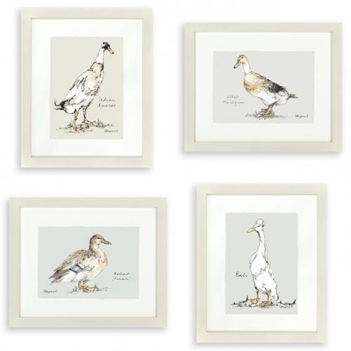 Gracie Tapner Framed Duck Watercolour Prints