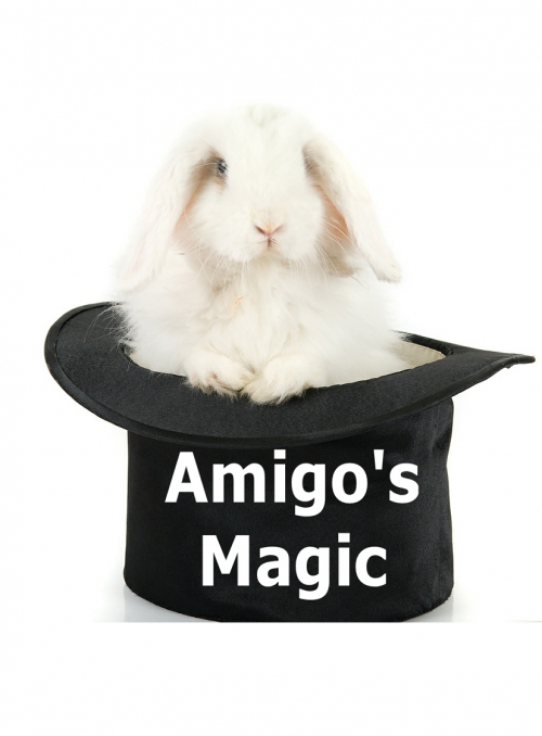 Easter Family Magic Show