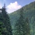 Transylvania dream holiday