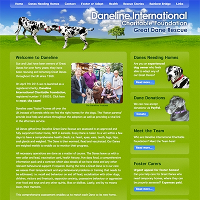 Daneline International Charitable Foundation, Bristol - responsive website design and build, guidance through charity application process